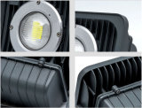 屋外か正方形または庭の照明(LNF101)のための30With60With100W IP65 LEDのフラッドライト