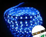 Tira del LED con entrega inmediata