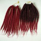 Havana Mambo Twist 12 pouces, La Havane Mambo Twist Crochet Braids