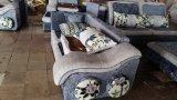 Sofa intéressant de meubles de salle de séjour de sentiment (2195)