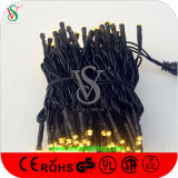 10m 100LEDs 110V Belüftung-Kabel-Zeichenkette-Licht