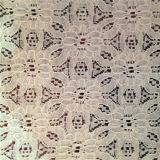 2016熱い販売の綿はかぎ針編みのレースを刺繍する