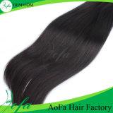 Cabelo castanho escuro malaio da Virgem humana com peruca de cabelo Remy