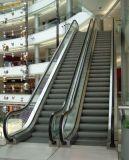 Escalator avec l'acier inoxydable de délié