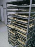 Ressort oblong fabriqué à la main Rolls du légume 20g/Piece Cylinderical de 100% congelé par IQF