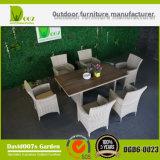 Jogo poli ajustado da cadeira de tabela do jantar do Rattan do jardim ao ar livre da mobília