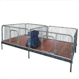 Porcelet Nursery Bed/Nursery Bed /Piglet Care Beds pour Pig Industry