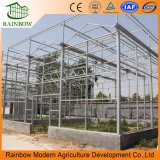 Тип стеклянный парник Venlo для земледелия/овоща/завода