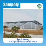 低価格のプラスチックフィルムのトマトの温室