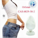 Fat Reduce and Weight Loss Drugs Orlistat CAS: 96829-58-2