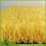 学校のための赤く青く黄色い景色の草