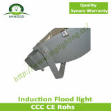 Hohes Brightness Waterproof Induction Flood Light mit 5 Years Warranty