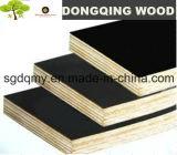 A película preta enfrentou o núcleo do Poplar da madeira compensada da manufatura de Shandong