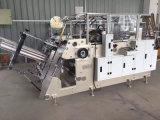 Automatischer PET Rtzf800 überzogenes Papier-Hamburger-Kasten, der Maschine bildet