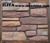 Kunst van de Blokken van de Behoudende Muur van het Tentoongestelde voorwerp van de Baksteen