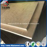 Möbel-Grad-Pappel-Kern-Birken-Furnier-Blattuvhandelsfurnierhölzer