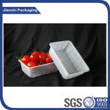 Beschikbaar Plastic Fruit of Plantaardig Dienblad