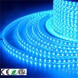 Im Freien 5050SMD RGB hohes Streifen-Licht des Volt-110V/220V LED