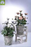 Kunstmatige Mini nam Boquet in de Pot van het Cement van de Kleur voor Ornament toe