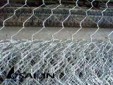 Sailin Caliente-Sumergió la tela metálica galvanizada de pollo