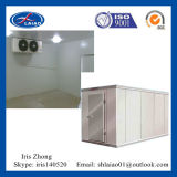 Hot-Sale Cold Room (walk in freezer) para Frutas / Peixe / Carne / Flor