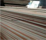 Madera contrachapada comercial de Okoume/Bintangor/Pine/Birch/Keruing