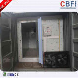 Dos peixes duráveis amplamente utilizados da estrutura de edifício de Cbfi quarto frio