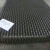 مصنع [هيغقوليتي] حجارة يحاك [وير سكرين] جراشة [فيبرت سكرين] شبكة