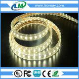Indicatore luminoso di striscia flessibile caldo di vendita 220V SMD2835 LED con CE