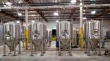 De Apparatuur van het bier bij de Staaf/de Verse Apparatuur van het Bierbrouwen