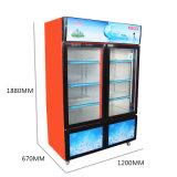 Più grande congelatore dritto del portello scorrevole del volume con le due temperature ed armadi