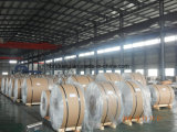 Bobina de aluminio, tira de aluminio de la fábrica
