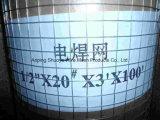 담 (중국 공장)를 위한 용접된 철망사