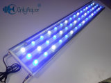High Power 48 * 3W LED Aquarium Lighting pour réservoir d'eau salée