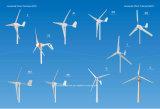 pequeño generador de viento horizontal de 400watt 24V (SHJ-400M)