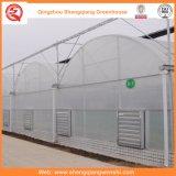 Chambres vertes en plastique d'agriculture/film publicitaire/jardin avec le système de refroidissement