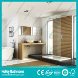 Hot Sellingwalk-in Shower Cabin with Tempered Laminated Glass (SE930C)