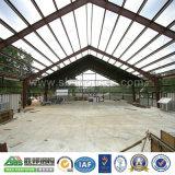 Construction d'atelier de structure en métal de qualité