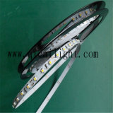 Tira impermeable los 60LEDs/M de Flexibe 24V 3528 SMD LED