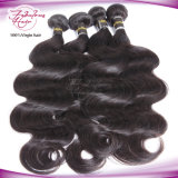 Weave do cabelo do Virgin para o cabelo humano malaio de mulheres pretas