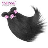 Großhandelsjungfrau-rohes indisches Haar