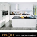 Keuken Cabinetry met het Ontwerp tivo-0282h van de Kabinetten van de Douane