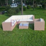 Meubles extérieurs réglés de jardin de sofa de sofa de rotin de PE