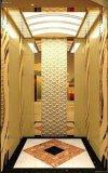Fabricante profesional de elevador de la elevación de la casa/del edificio/del chalet