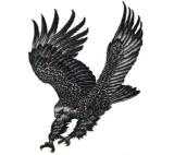 Autoadesivo provvisorio impermeabile del tatuaggio di arte dell'autoadesivo del tatuaggio dell'aquila