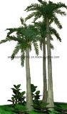 高品質人工的な王ココヤシの木の木