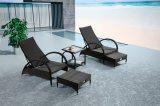Установленный салон фаэтона бассеина Wicker/ротанга сада - напольная мебель (LN-910)