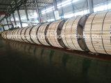 アルミニウムコンダクターの鋼鉄はオーバーヘッド送電線のためのAcssのコンダクターをサポートした
