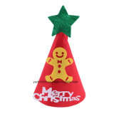 Chapéu do Natal e decoração da meia