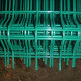 Treillis métallique soudé enduit en plastique de PVC pour faire la trappe de crabe